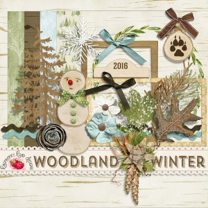 Woodland Winter Mini Kit