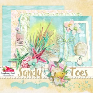 Sandy Toes Mini Kit